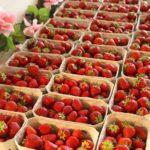 Erdbeerbuffet